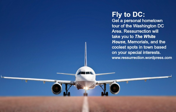 fly to dc words